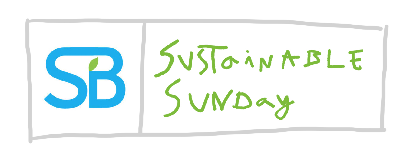 Image result for SUSTAINABLE SUNDAY